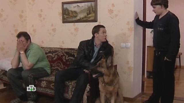 «Минута славы».«Минута славы».НТВ.Ru: новости, видео, программы телеканала НТВ