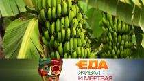 Неужели бананы опасны, все огорчице иполезные кухонные гаджеты.Неужели бананы опасны, все огорчице иполезные кухонные гаджеты.НТВ.Ru: новости, видео, программы телеканала НТВ
