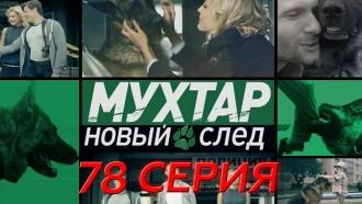 Сериал «Мухтар. Новый след»: «Такая работа».НТВ.Ru: новости, видео, программы телеканала НТВ