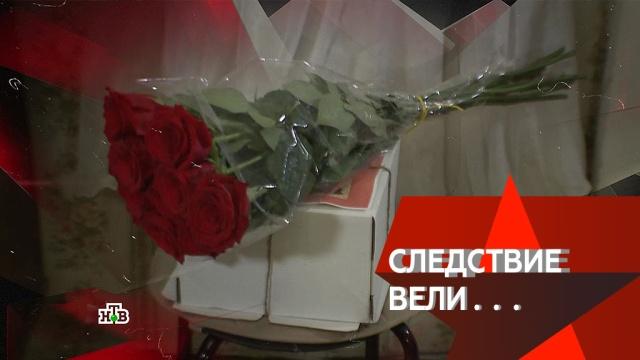 «Товарищ любовница».«Товарищ любовница».НТВ.Ru: новости, видео, программы телеканала НТВ