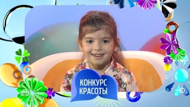 25 марта 2018 года.Выпуск семьдесят второй.НТВ.Ru: новости, видео, программы телеканала НТВ