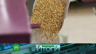 2апреля 2018года.2апреля 2018года.НТВ.Ru: новости, видео, программы телеканала НТВ
