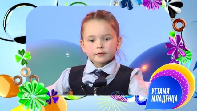 8 апреля 2018 года.Выпуск семьдесят четвертый.НТВ.Ru: новости, видео, программы телеканала НТВ