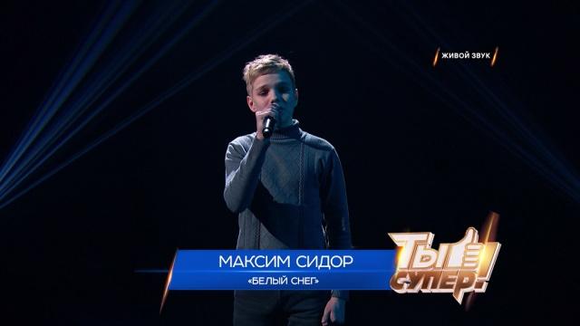 «Ты супер!»: Максим Сидор, 13лет, Липецкая область. «Белый снег»