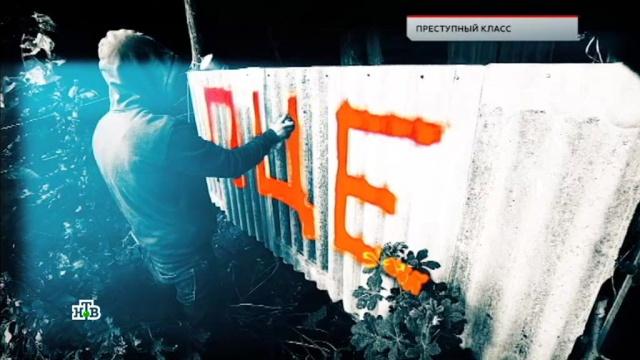 «Преступный класс».«Преступный класс».НТВ.Ru: новости, видео, программы телеканала НТВ
