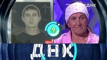 Выпуск от 26 июня 2018 года.«Убийца по каплям крови».НТВ.Ru: новости, видео, программы телеканала НТВ