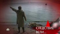 «Главный свидетель».«Главный свидетель».НТВ.Ru: новости, видео, программы телеканала НТВ