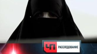 «ЧП. Расследование»: «Замуж за ИГИЛ»
