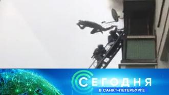 &laquo;Сегодня в&nbsp;<nobr>Санкт-Петербурге&raquo;</nobr>. 5&nbsp;сентября 2018&nbsp;года. 16:15