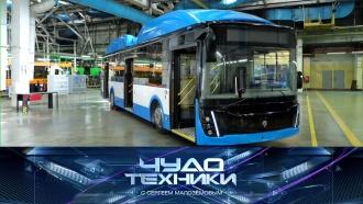 «Чудо техники»: электробусы вРоссии, как можно увеличить свой рост итайна Бермудского треугольника