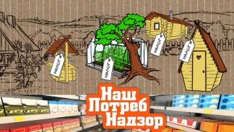 «НашПотребНадзор»: новые налоги иштрафы для дачников, экспертиза кофе «3в 1» иподделка лапши