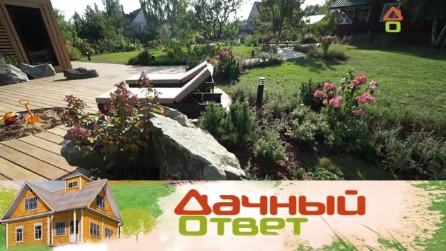 Стильная зона отдыха для взрослых идомик на дереве со скалодромом для детей.Стильная зона отдыха для взрослых идомик на дереве со скалодромом для детей.НТВ.Ru: новости, видео, программы телеканала НТВ