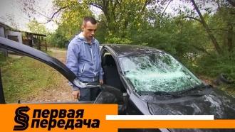 Все вделе, но никто не при делах: как заставить платить ответственных за упавший на машину столб? «Первая передача»— ввоскресенье в10:20.автомобили.НТВ.Ru: новости, видео, программы телеканала НТВ