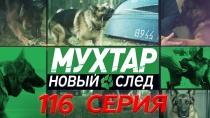 116-я серия.116-я серия.НТВ.Ru: новости, видео, программы телеканала НТВ