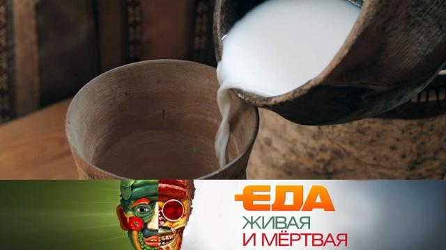 Выпуск от 29 сентября 2018 года.Польза кисломолочных продуктов, необычные рецепты из грибов и секреты смородины.НТВ.Ru: новости, видео, программы телеканала НТВ