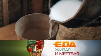 Польза кисломолочных продуктов, необычные рецепты из грибов исекреты смородины