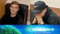 11 октября 2018 года. 16:15.11 октября 2018 года. 16:15.НТВ.Ru: новости, видео, программы телеканала НТВ