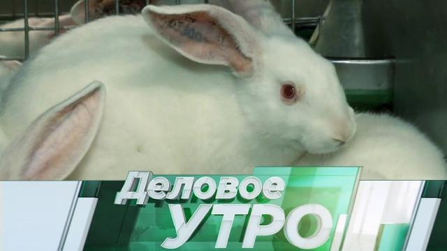 12 октября 2018 года.12 октября 2018 года.НТВ.Ru: новости, видео, программы телеканала НТВ