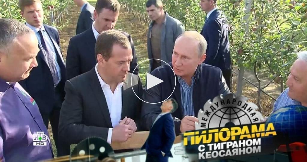 Как при Владимире Путине яблони давали по три урожая, абойцы без правил вели себя по правилам?
