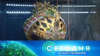 &laquo;Сегодня в&nbsp;<nobr>Санкт-Петербурге&raquo;</nobr>. 1&nbsp;ноября 2018&nbsp;года. 19:20