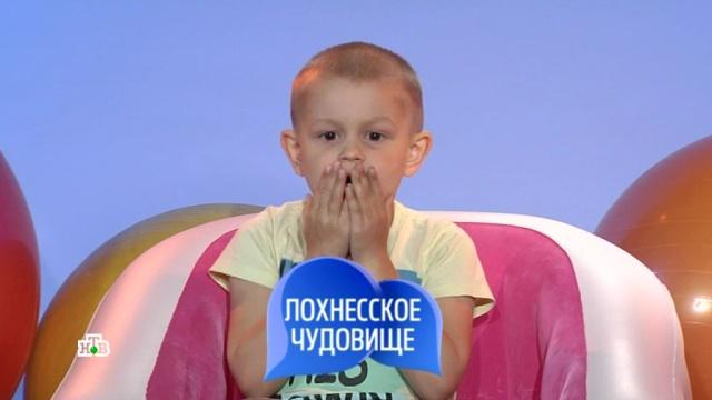 4 ноября 2018 года.Выпуск девяносто восьмой.НТВ.Ru: новости, видео, программы телеканала НТВ