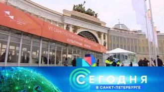 «Сегодня в<nobr>Санкт-Петербурге»</nobr>. 15ноября 2018года. 16:15