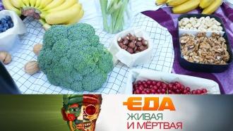«Еда живая имёртвая»: продукты, продлевающие жизнь, полезные бургеры иэкспертиза цикория