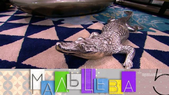 Выпуск от 19ноября 2018года.Крокодил имаджонг вновогоднем интерьере, как правильно загадывать желания ихранить постельное белье.НТВ.Ru: новости, видео, программы телеканала НТВ
