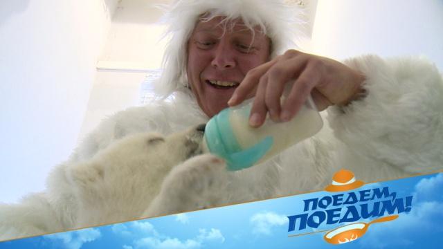 Джон Уоррен выберет лучшее место для зимнего отдыха! «Поедем, поедим!»— всубботу на НТВ.НТВ.Ru: новости, видео, программы телеканала НТВ