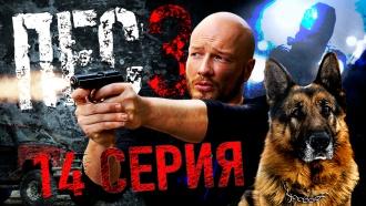 «Осторожно, Моника».НТВ.Ru: новости, видео, программы телеканала НТВ