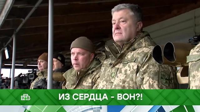 Выпуск от 11 декабря 2018 года.Из сердца — вон?!НТВ.Ru: новости, видео, программы телеканала НТВ