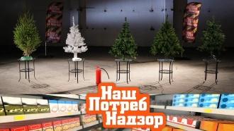 «НашПотребНадзор»: огнеопасные новогодние елки, массаж для похудения иэкспертиза блинчиков смясом