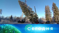 16 декабря 2018 года. 16:00.16 декабря 2018 года. 16:00.НТВ.Ru: новости, видео, программы телеканала НТВ