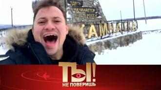 «Ты не поверишь!»: дерзкая выходка Андрея Гайдуляна, свадьба Владимира Кузьмина иподвиг Александра Розенбаума