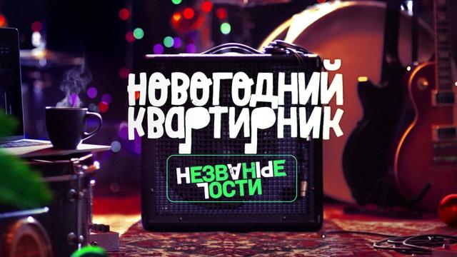 Новогодний выпуск.Новогодний выпуск. Незваные гости.НТВ.НТВ.Ru: новости, видео, программы телеканала НТВ