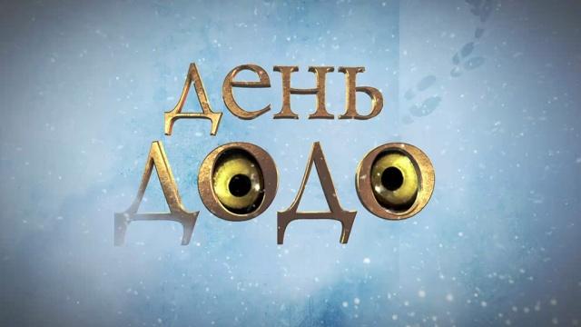 «День додо».«День додо».НТВ.Ru: новости, видео, программы телеканала НТВ