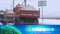 18 января 2019 года. 19:20.18 января 2019 года. 19:20.НТВ.Ru: новости, видео, программы телеканала НТВ