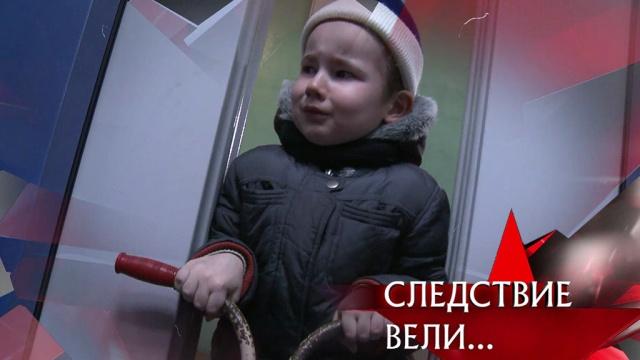 «Маленький наследник».«Маленький наследник».НТВ.Ru: новости, видео, программы телеканала НТВ
