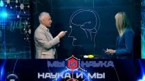 Выпуск от 1 февраля 2019 года.Через 10 лет люди расшифруют сновидения.НТВ.Ru: новости, видео, программы телеканала НТВ