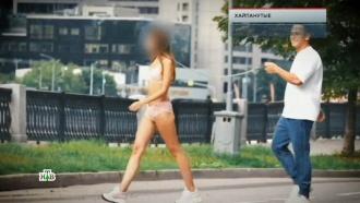 «Хайпанутые».«Хайпанутые».НТВ.Ru: новости, видео, программы телеканала НТВ