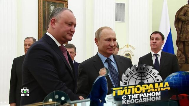 Вирус коррупции: чем выманить заболевших из кабинетных норок?НТВ.Ru: новости, видео, программы телеканала НТВ
