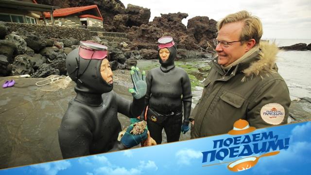 Джон Уоррен вКорее познакомится со старушками-ныряльщицами ипоработает на мандариновой плантации. «Поедем, поедим!»— всубботу на НТВ.НТВ.Ru: новости, видео, программы телеканала НТВ