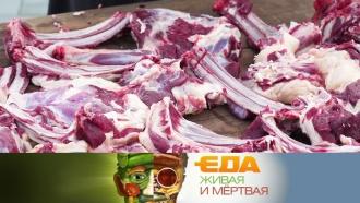 За что баранину ругают диетологи ичем кормят военных? «Еда живая имёртвая»— всубботу на НТВ.еда.НТВ.Ru: новости, видео, программы телеканала НТВ