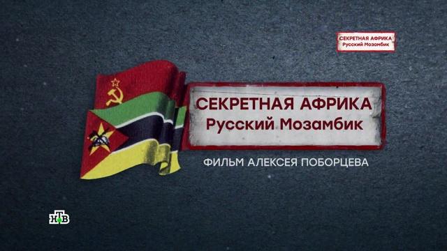 «НТВ-видение». Документальный цикл .журналистика, кино.НТВ.Ru: новости, видео, программы телеканала НТВ