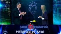 Выпуск от 22февраля 2019года.Через 10лет люди не будут умирать от инфаркта?НТВ.Ru: новости, видео, программы телеканала НТВ