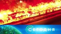 22 февраля 2019 года. 13:00.22 февраля 2019 года. 13:00.НТВ.Ru: новости, видео, программы телеканала НТВ