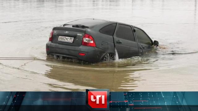 26 февраля 2019 года.26 февраля 2019 года.НТВ.Ru: новости, видео, программы телеканала НТВ