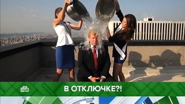 Выпуск от 28 февраля 2019года.В отключке?!НТВ.Ru: новости, видео, программы телеканала НТВ
