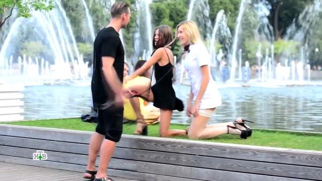 «Курсы легкого поведения».«Курсы легкого поведения».НТВ.Ru: новости, видео, программы телеканала НТВ
