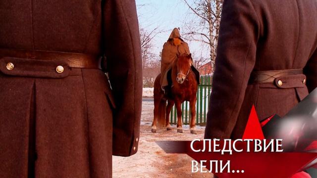 Выпуск от 3 марта 2019 года.«Всадник без головы».НТВ.Ru: новости, видео, программы телеканала НТВ